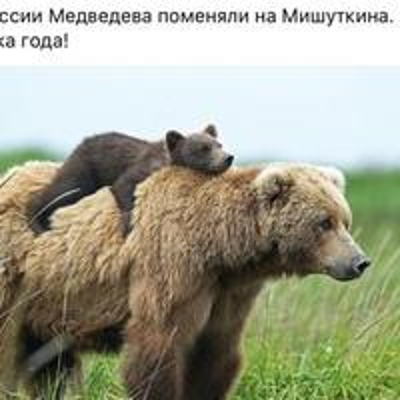 Юрий Камышанский